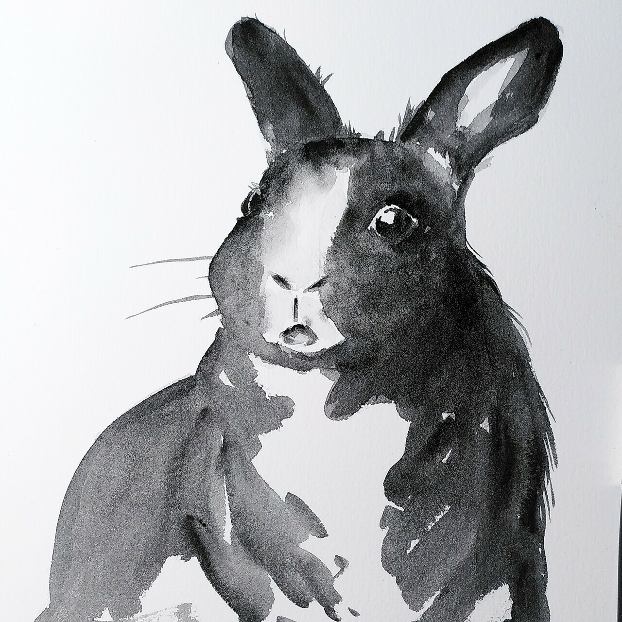 "A black and white painting of a sitting bunny, who looks confused at the viewer. Bold strokes, still with some details. In some areas granulation of the graphite is visible, which adds texture to the ""fur"" area. Some lines are washed out, others harsh, but it works"