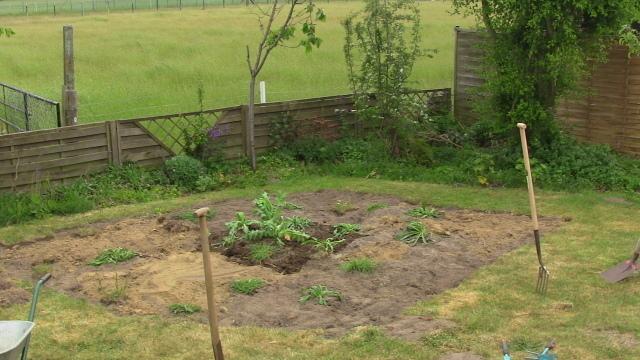 Frisch bepflanzte Fläche